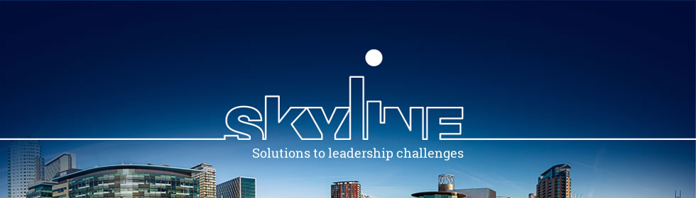 Skyline Management Consulting